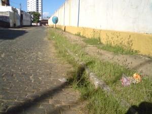O mato, pelo que tudo indica, daqui a um tempo será tão grande quanto o muro do Mário Pessoa.