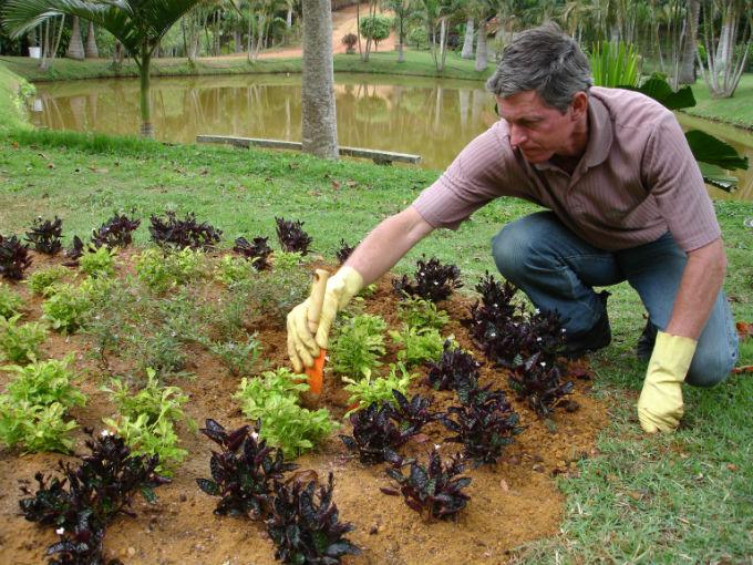 A loja vai contratar um jardineiro com experiência e três ajudantes.