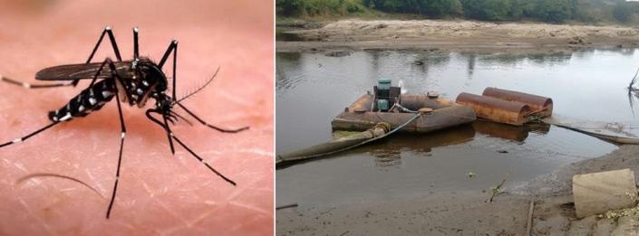 O Aedes aegypti e a falta d'água preocupam autoridades e população de Itabuna. Imagens: Click On e Pimenta.