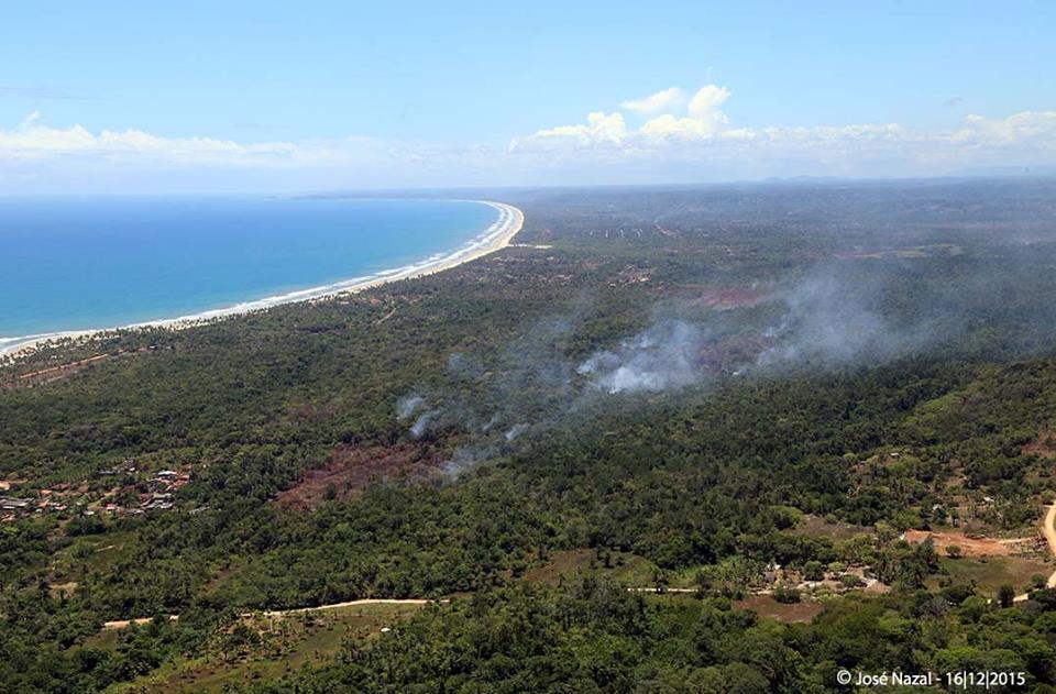 Mata em chamas no litoral norte de Ilhéus. Imagens: José Nazal.