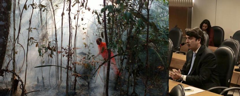 Deputado Pedro Tavares pediu a atenção das autoridades estaduais para o combate ao fogo.