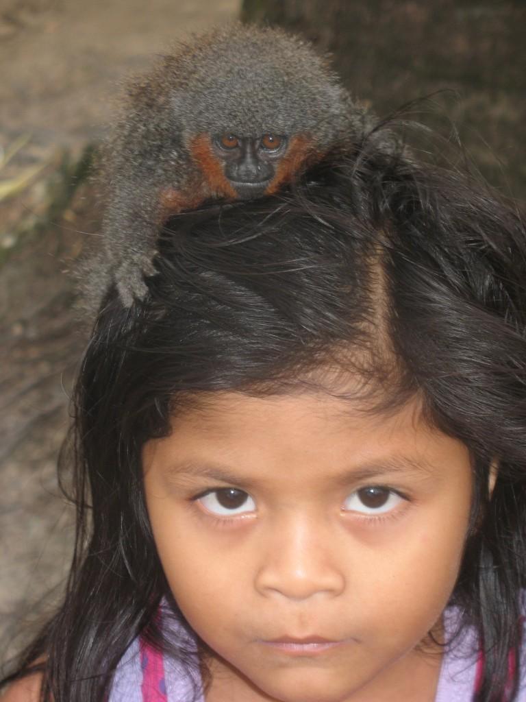 Terra Indígena Tenharim, em Manicoré, sul do Amazonas. Imagem: Alceu Castilho.