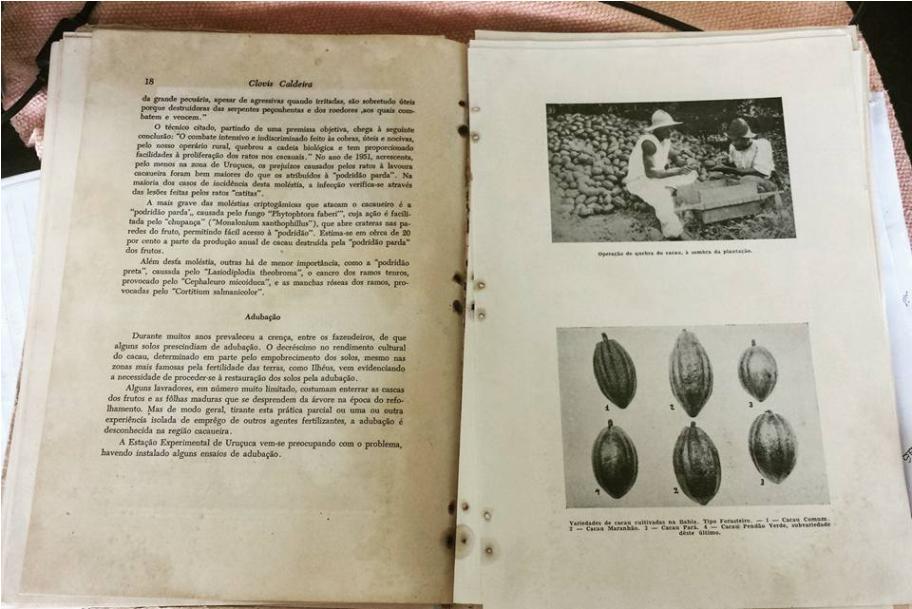 Imagem do livro de Clóvis Caldeira (arquivo da família).