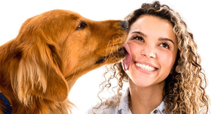 """João Pereira Coutinho nos lembra que """"há mulheres e mulheres e cachorros e cachorros""""."""