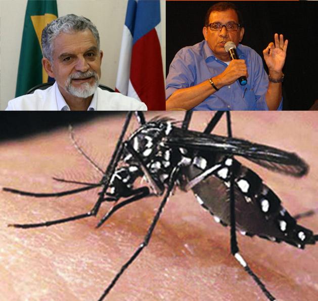 ios itabuna dengue