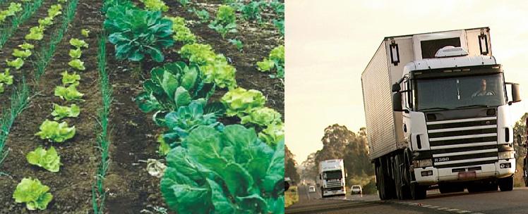 caminhoneiro e agricultura