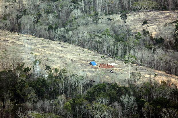 Área de desmatamento em Santa Cruz Cabrália. Imagem: Diego Padgurschi/ Folhapress.