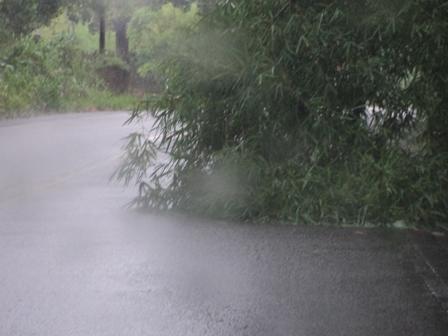O perigo é evidente na Rodovia Ilhéus-Uruçuca (exceto para o DERBA).